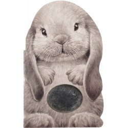 Furry Bunny (Mini Friends...