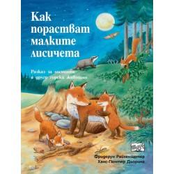 Как порастват малките лисичета